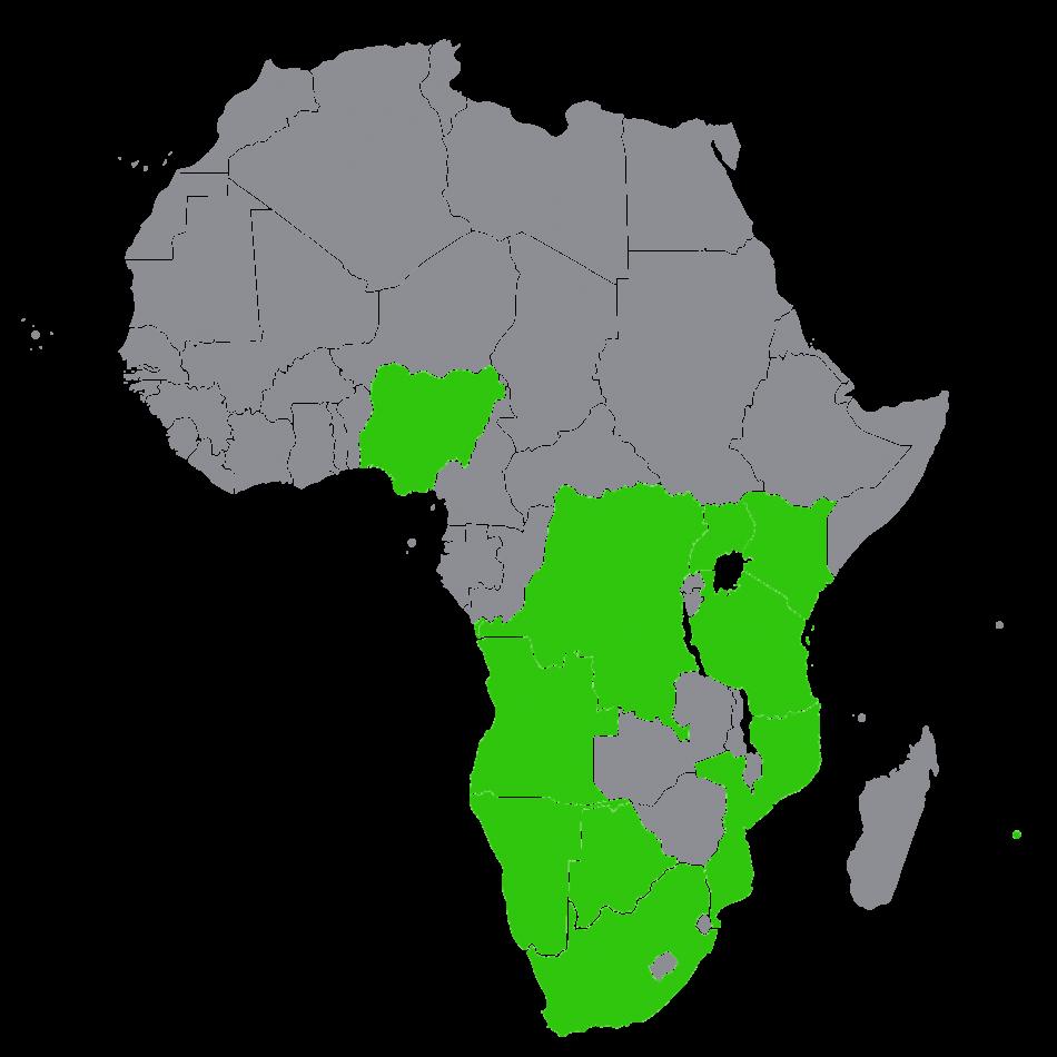 africannoback